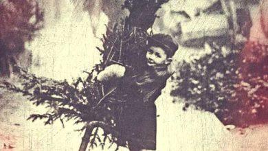 Photo of O μύθος των Χριστουγέννων
