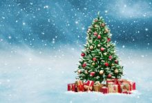 Photo of Στολίδια στο δέντρο: Χριστούγεννα, η ωραιότερη εποχή του χρόνου